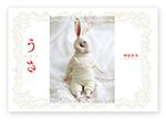 usa_hyoshi_pu.jpg